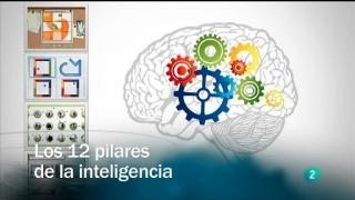 Redes  - Los 12 pilares de la inteligencia