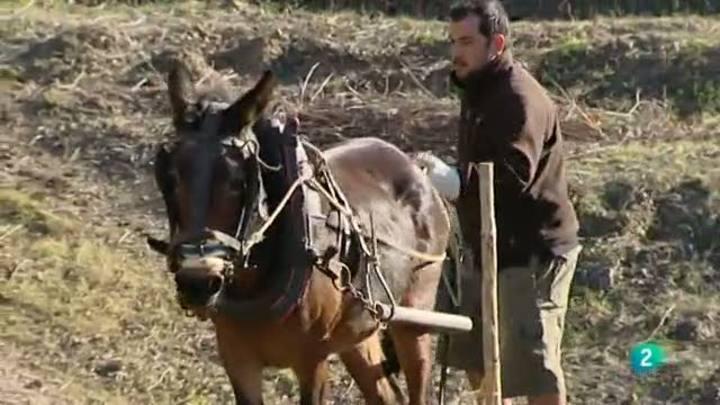 Para Todos La 2 - Vídeo: Agricultura biodinámica