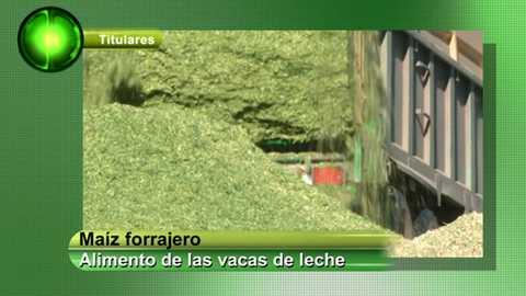 Agrosfera - 06/10//18