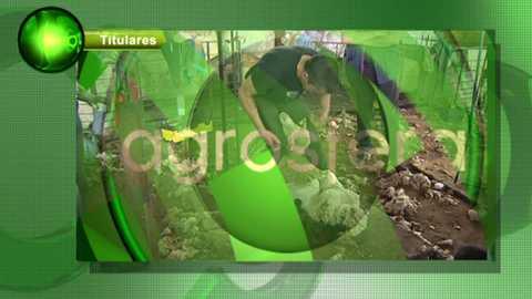 Agrosfera - 07/04/18 (424)