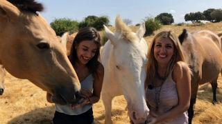 Aquí la tierra - Ana Guerra y su pasión por los caballos