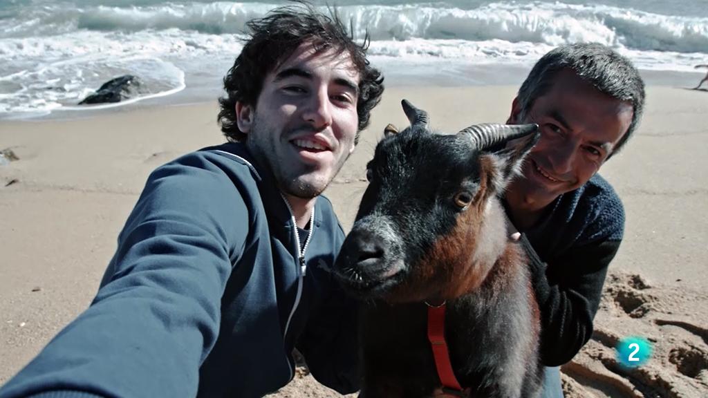 La meva mascota i Jo - Andreita, la cabra vilassarenca