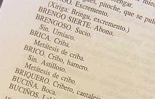 """España Directo - Aquí se habla """"gacería"""""""