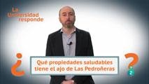 Universidad de Castilla-La Mancha: El ajo de las Pedroñeras.