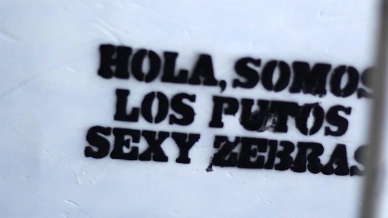 Backline - Sexy Zebras: la osadía del rock - 16/05/17