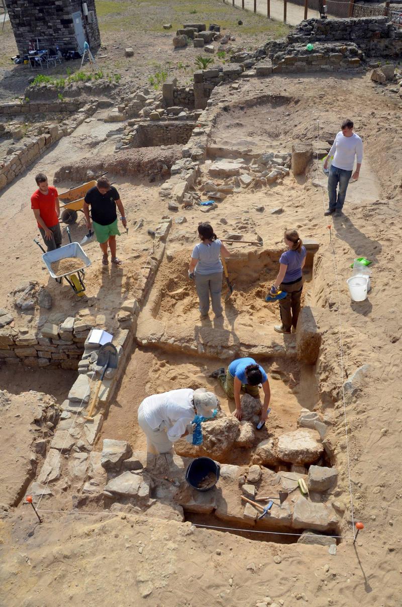 En Baelo Claudia se han encontrado restos arqueozoológicos que revelan que el Mediterráneo fue hogar de dos especies de ballenas hoy desaparecidas de este mar.