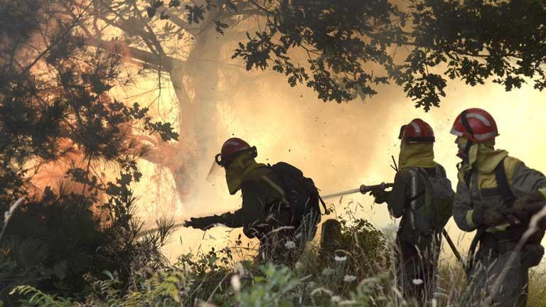 Se moviliza un amplio dispositivo de prevención y extinción en la lucha contra el fuego