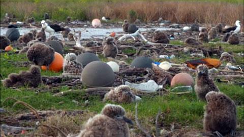 Cada segundo se vierten a los océanos hasta 200 kilos de plástico