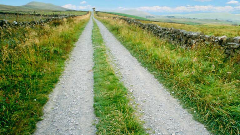 El Escarabajo Verde - Camino público: prohibido el paso