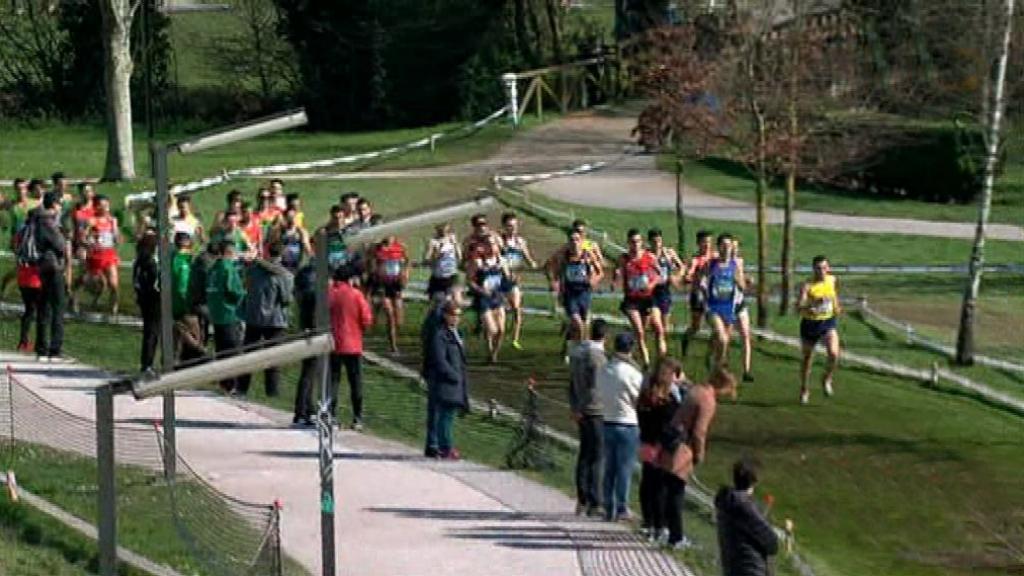 Cross - Campeonato de España de Clubes. Carrera Corta Masculina