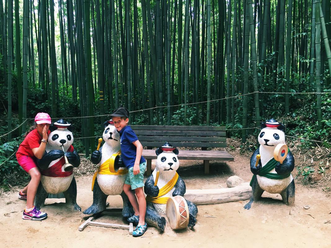 Candela y Mateo en un bosque de bambú