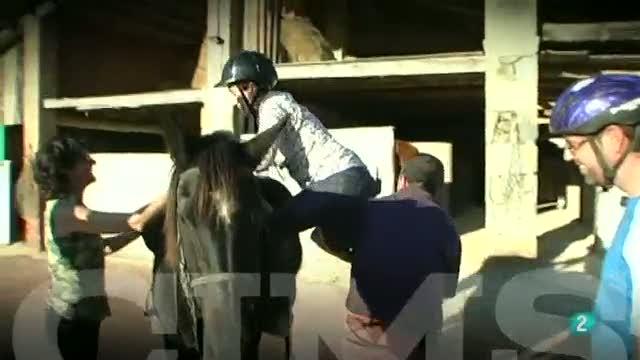 CIMS -  Carme Ruscalleda - Puigsacalm