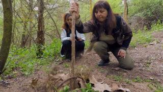 Aquí la tierra - A la caza del cazador