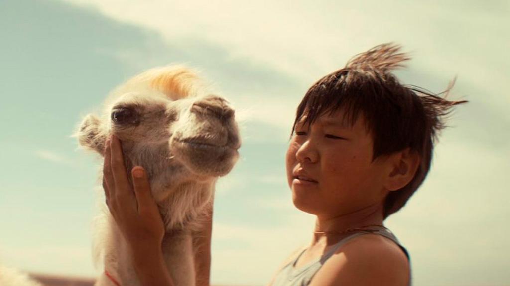 'Celestial camel'