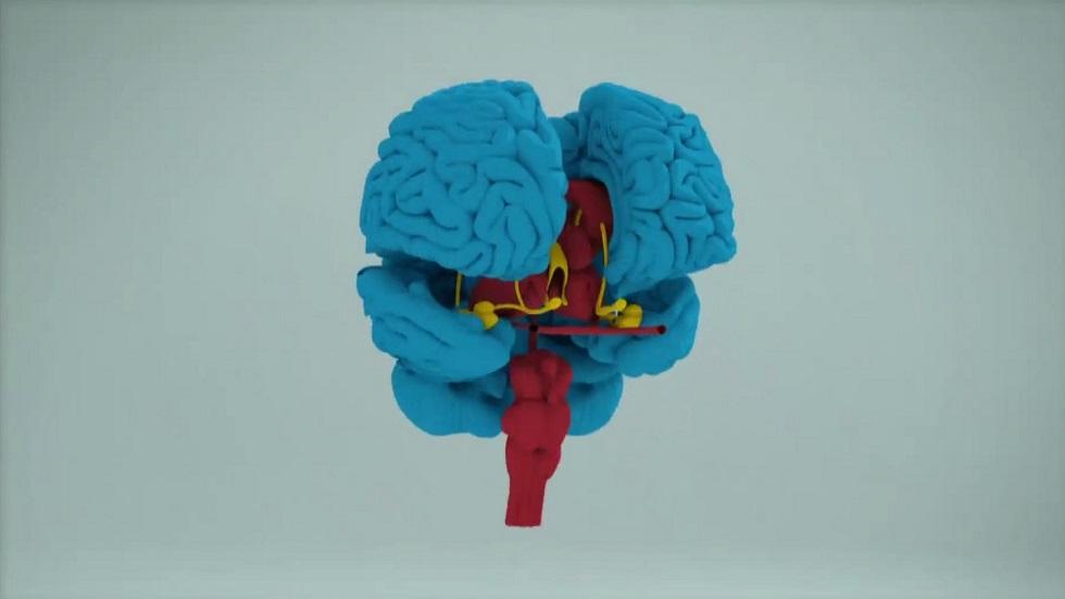 Desafía tu mente - El cerebro adulto tiene automatizada la capacidad lectora