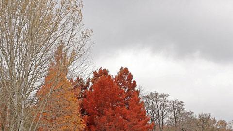 Cielo despejado y temperaturas sin cambios en toda la geografía