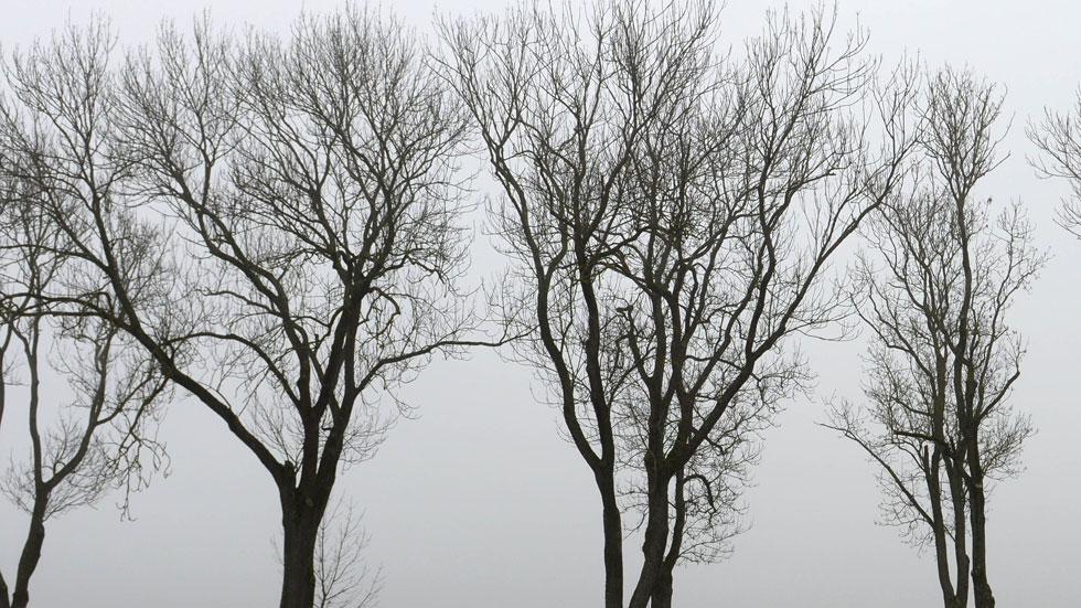 Cielo muy nuboso en la mayor parte de España