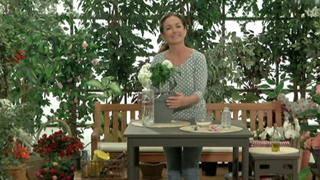 La mañana - Los consejos de Maxi: Cómo mantener las plantas bien regadas