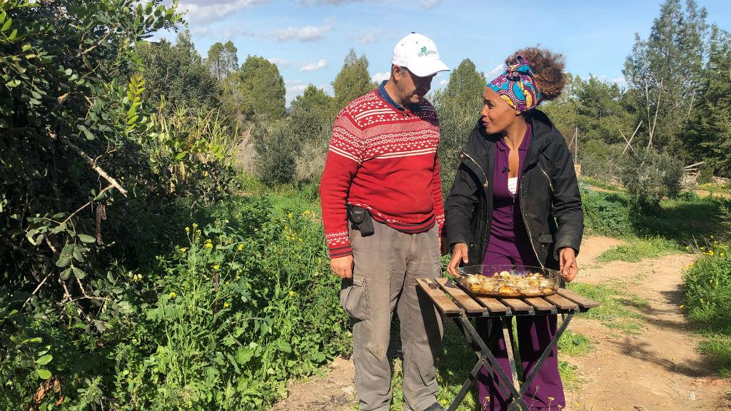 Aquí la tierra - ¿Conoces el rábano negro, la colocasia o el tupinambo?
