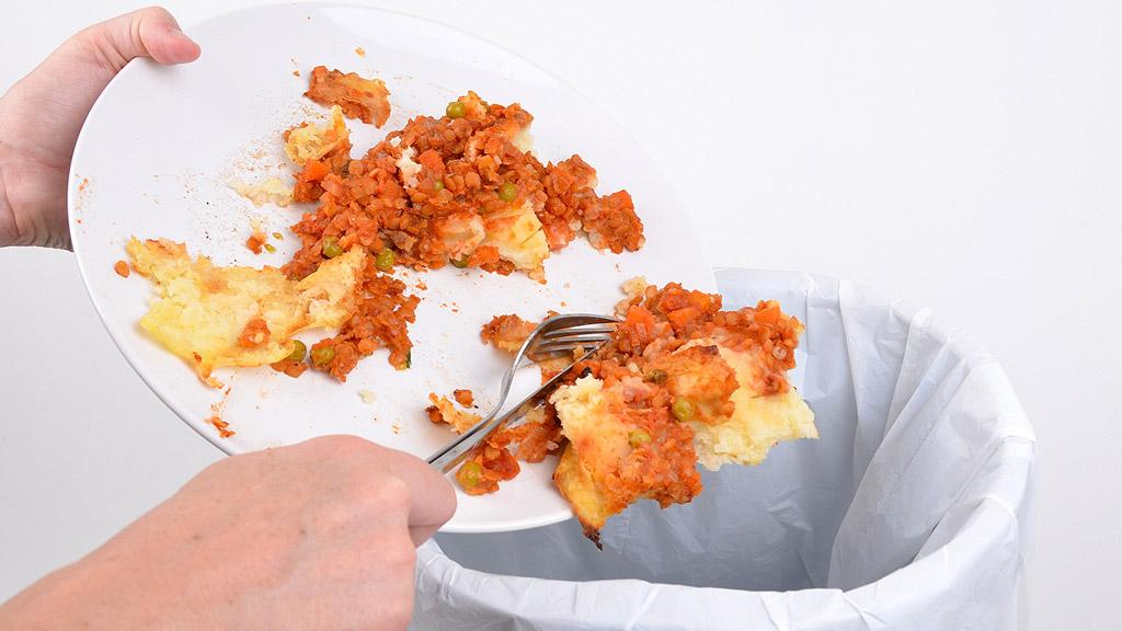 Cuatro de cada diez alimentos que compramos acaban en la basura
