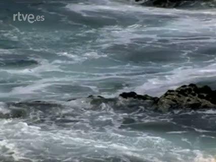 Raíces - Danzas y el mar
