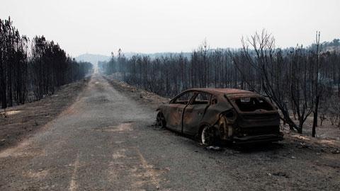Decenas de incendios siguen arrasando el norte de Portugal
