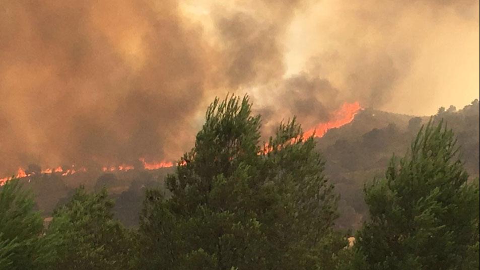 Declarado en Albacete un incendio forestal en el municipio de Liétor