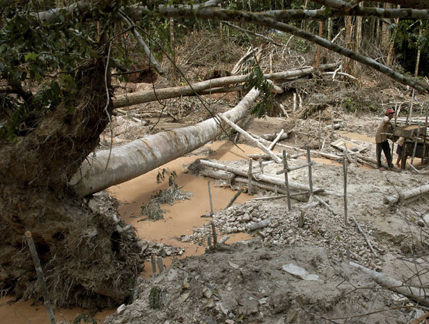 En portada - Desafío amazónico