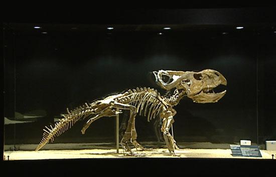 Una de las exposiciones de dinosaurios más importantes del mundo, en Madrid