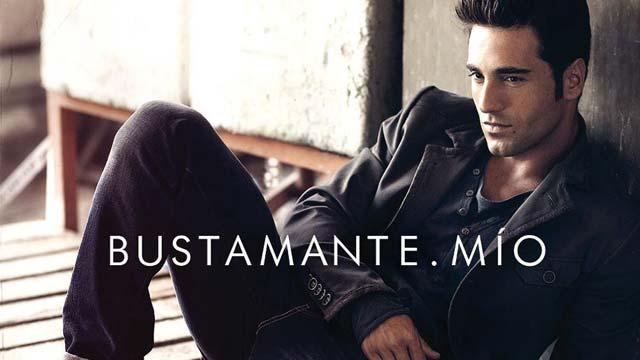 Disco del año 2011 - David Bustamante