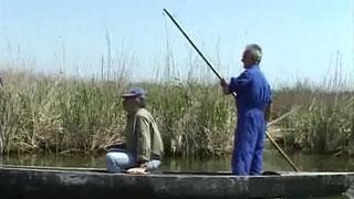 Un país en la mochila - Donde el Ebro se hace Delta