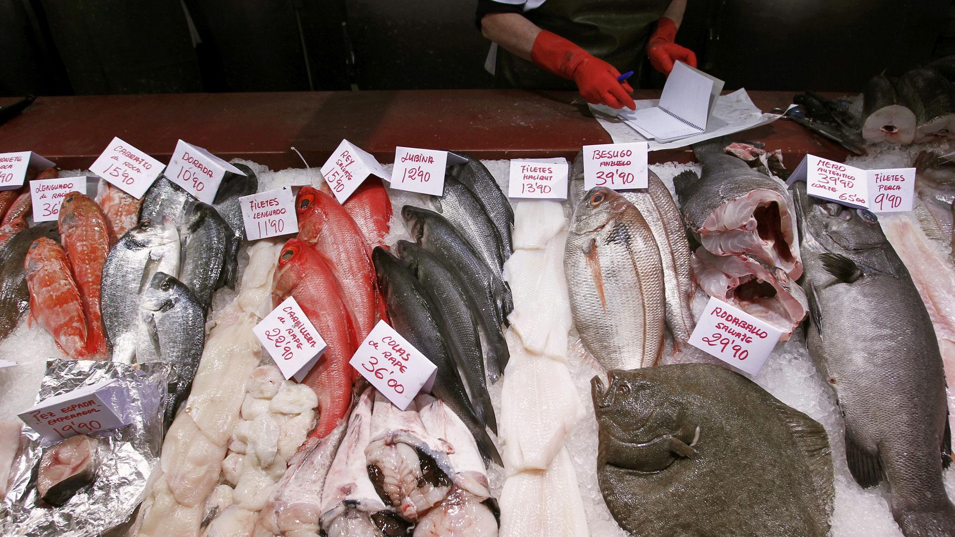 Dos pesqueros españoles prueban una máquina para matar el anisakis de las vísceras antes de arrojarlas al mar