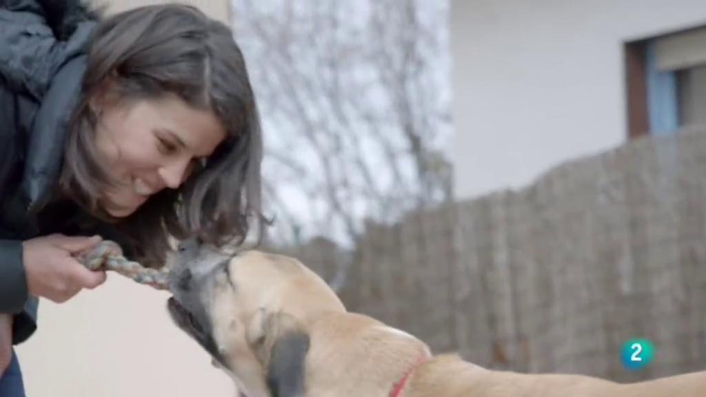 La meva mascota i jo - Els beneficis de l'equinoteràpia