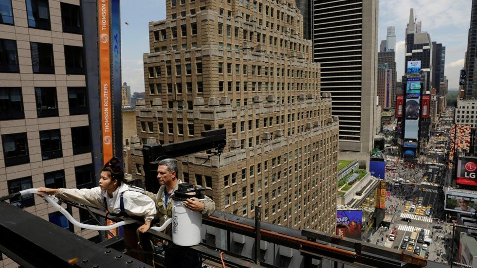 Una enorme colmena aparece en pleno corazón de Manhattan