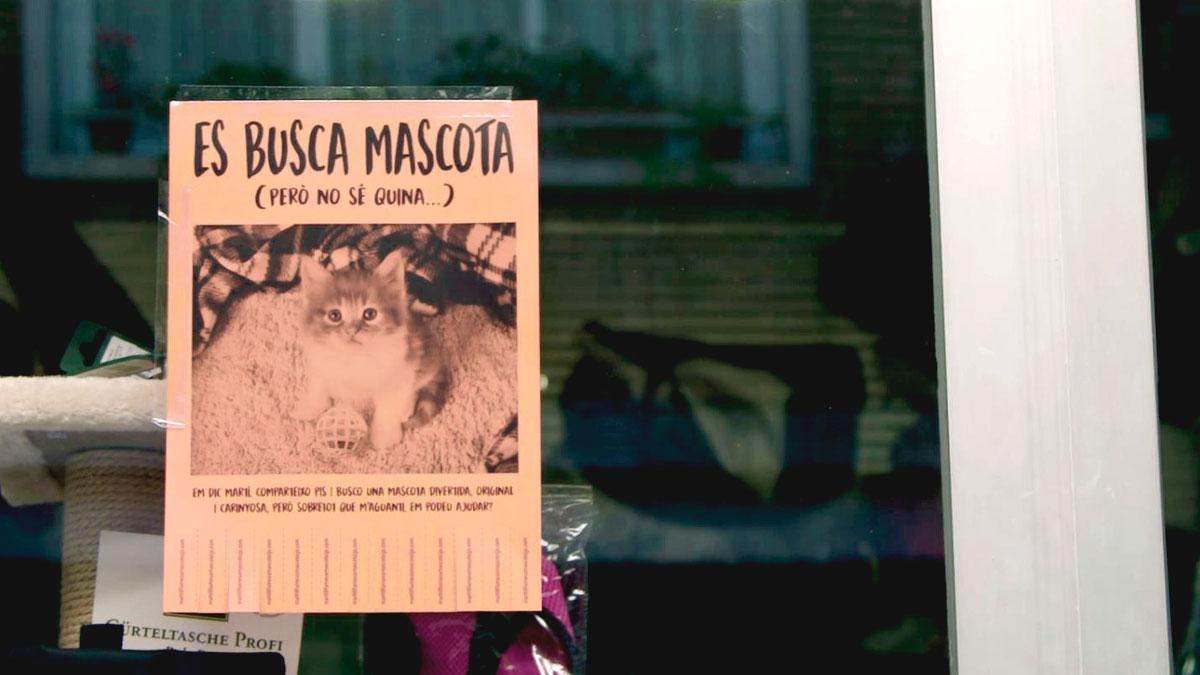 La meva mascota i jo - Ens ajudes a trobar la mascota més divertida de Catalunya?