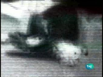 Documentos TV - Erik el belga