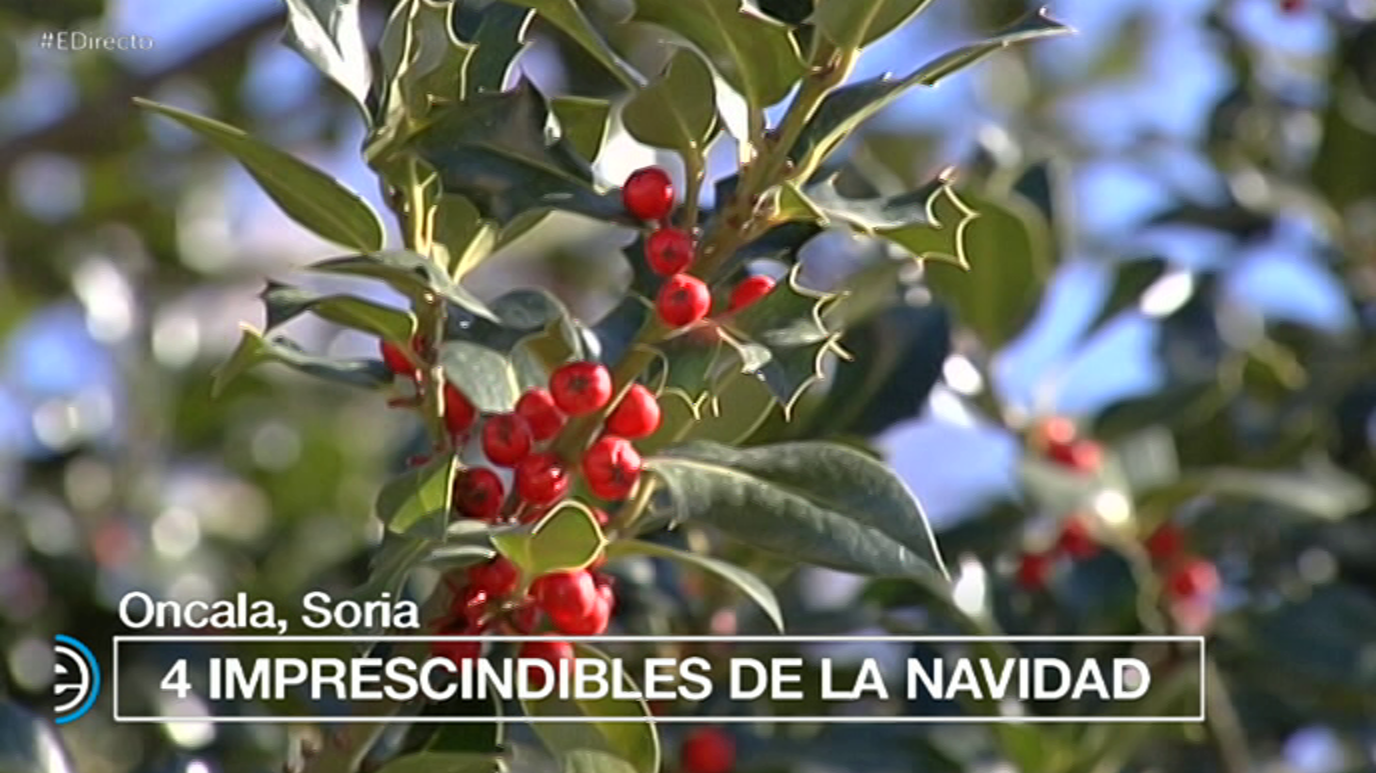 España Directo - 05/12/17