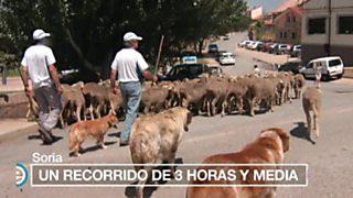 España Directo - 12/07/16