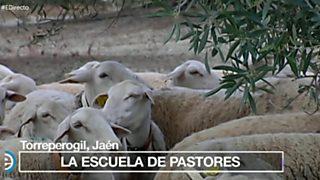 España Directo - 18/05/17