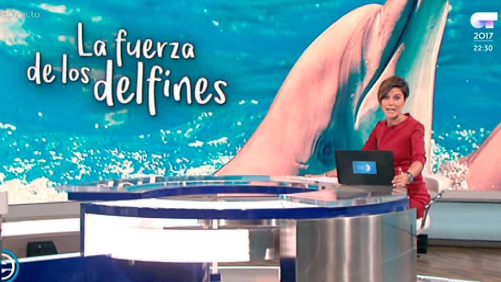 España Directo - 20/11/17