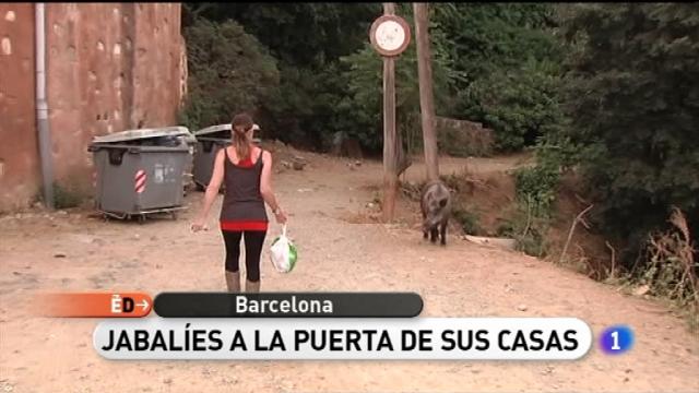 España Directo - 23/06/11