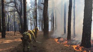 Estabilizado el incendio de La Palma en todos sus frentes mientras vuelven a casa los últimos desalojados