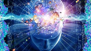 Redes - Estimula tu cerebro para vivir más y mejor