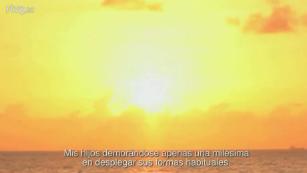 Palabra Voyeur - ¡Feliz vida nueva! - 31/12/14
