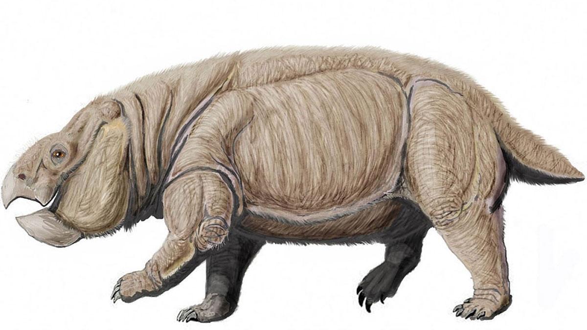 El fósil que reescribe la historia de los mamíferos