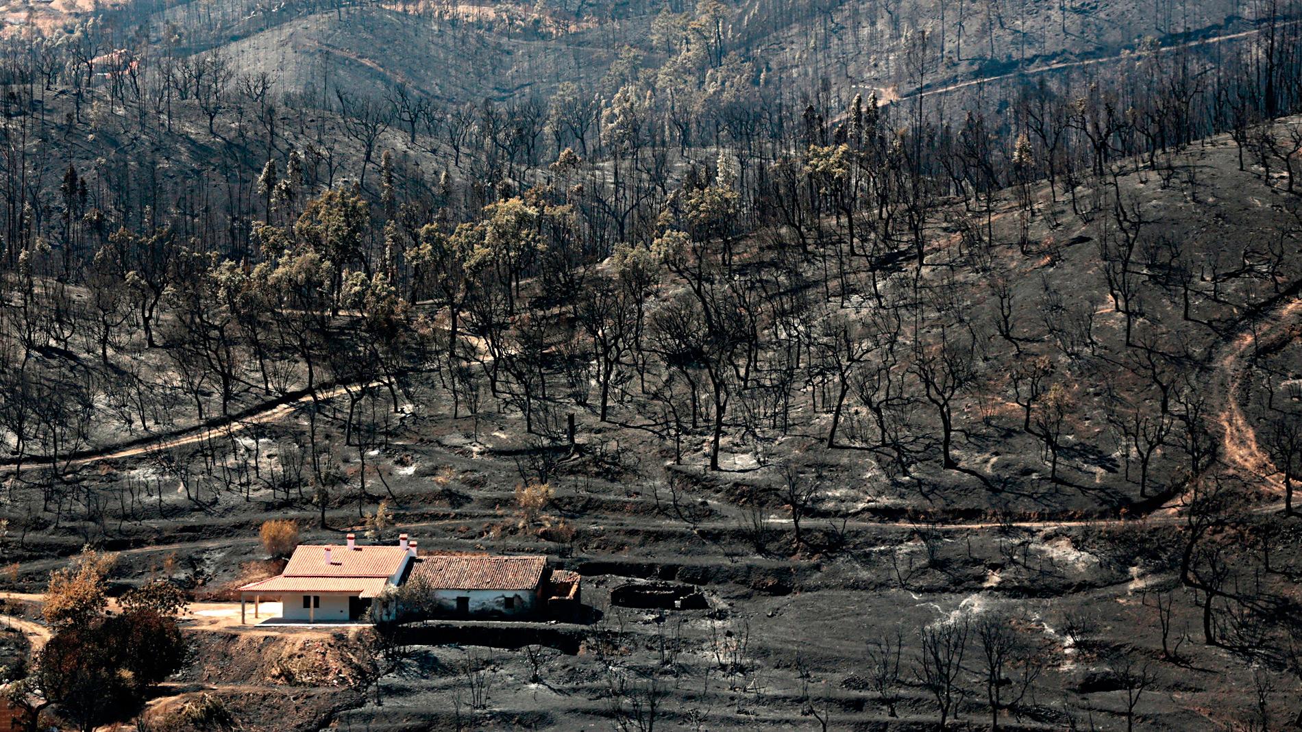El fuego que arrasa el Algarve ya está controlado