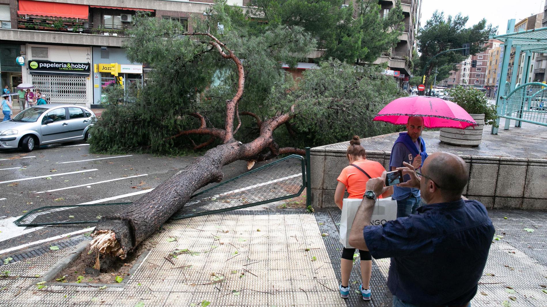 Una fuerte tormenta de unos minutos provoca el caos en Zaragoza: calles inundadas, caída de árboles y carreteras cortadas