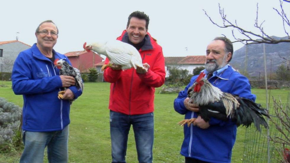 Aquí la tierra - Una gallina ¡más asturiana que la sidra!