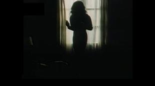 Delirios de amor - El gran amor de Max Coyote