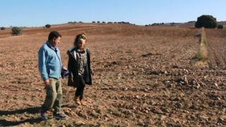 Aquí la tierra - Una gran siembra de Madrid